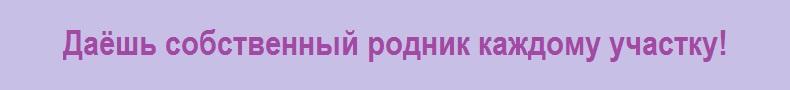 Deviz_8