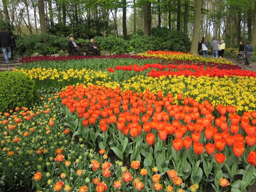 Парк цветов_0510